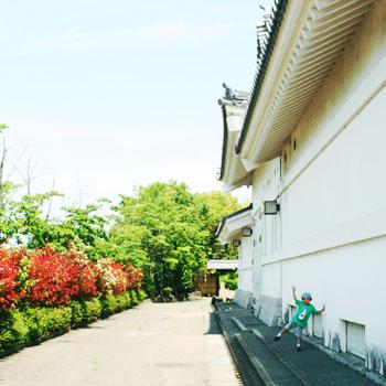 2011515sekiyadojyo